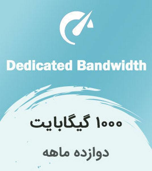 تصویر از اینترنت بیسیم اختصاصی دوازده ماهه با ترافیک 1000 گیگابایت بین الملل